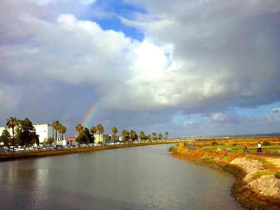 Caño Sancti Petri