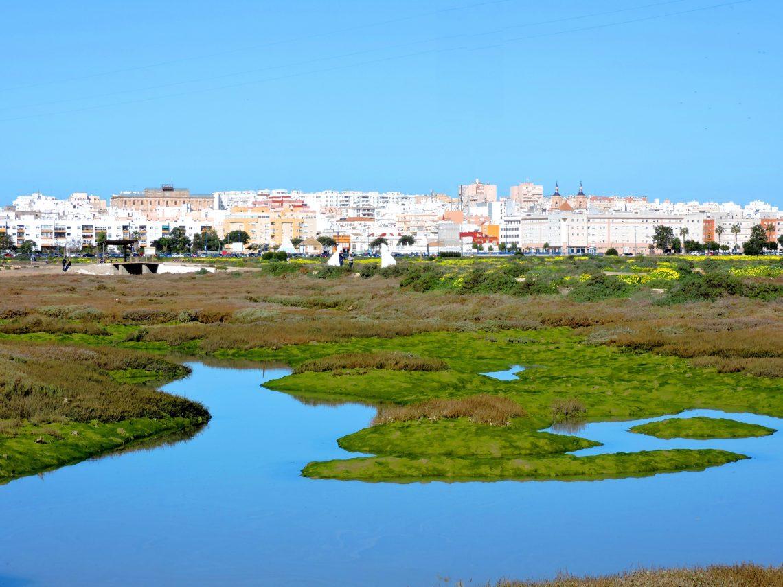 Carrascón
