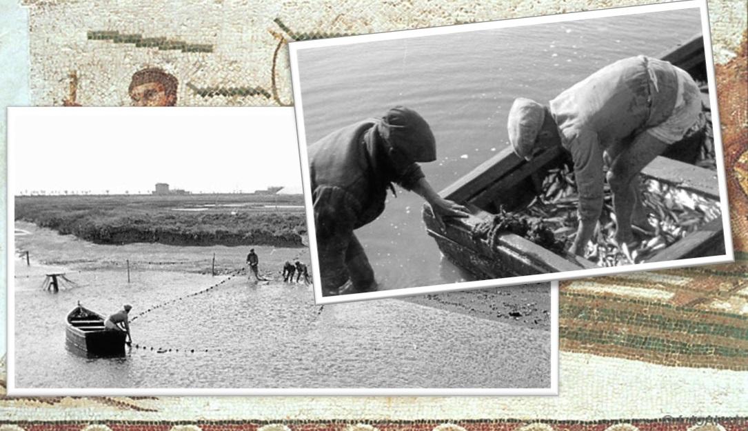 Despesque en Río Arillo, años 20. Fotos de M. Estrada Berro (Diario de Cádiz).