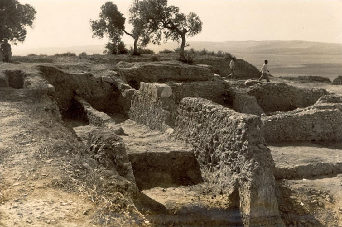 Una de las zonas excavadas por M. Esteve en Asta Regia a mediados del siglo XX.